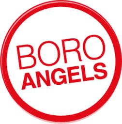 Boro-logo-252px
